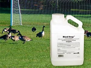 Bird Stop and Goose Repellent