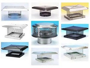 Wire mesh caps for chimney