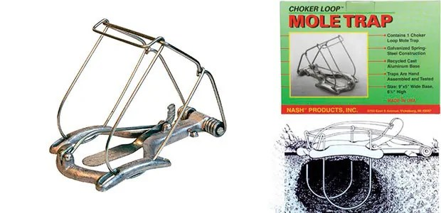Choker Loop Mole Trap