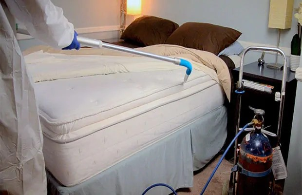 Conventional bedbugs treatment