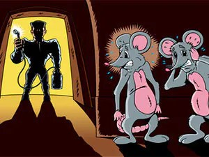 Rats elimination