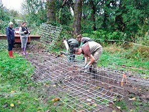Fencing solution for beavers protect