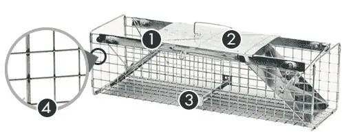 Havahart Traditional Medium-sized traps