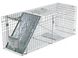 Havahart Large One door Collapsible trap