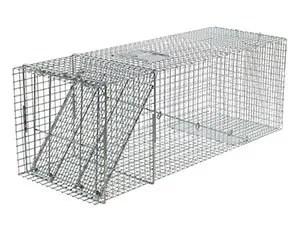 Havahart X Large 1-door trap