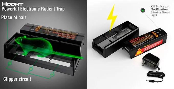 Hoont trap Info