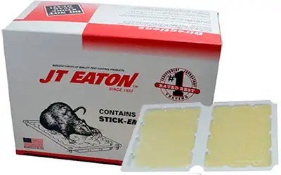 JT Eaton Stick-Em traps