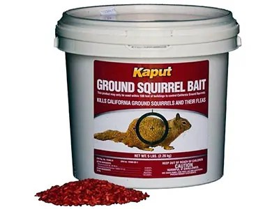 Kaput Squirrel Bait