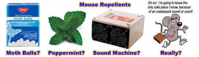 Mice repellents