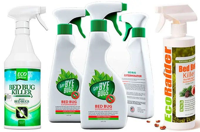 How Homemade Bed Bug Spray Can Get Rid Of Your Infestation