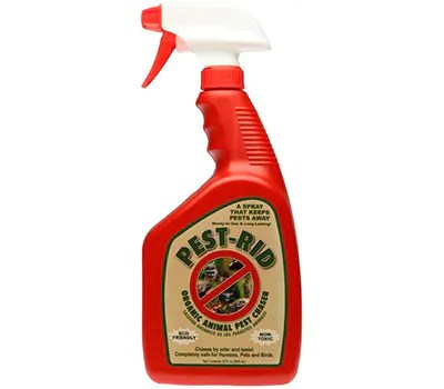 Pest-Rid Spray