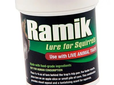 Squirrel Lure by Ramik