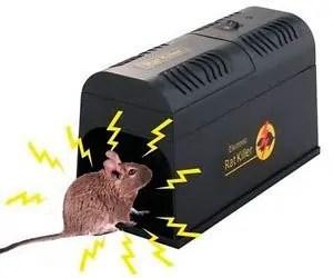 Electronic RatKiller
