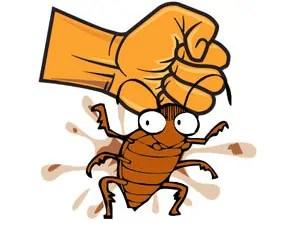Effective roach killer methods