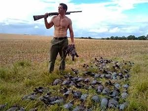 Pigeons shooting