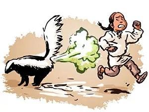 Sprayed by a skunk