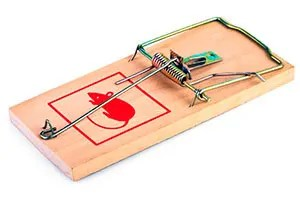 Standart wooden mouse trap