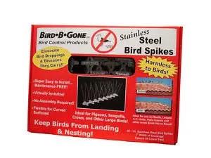 Steel pigeon spikes
