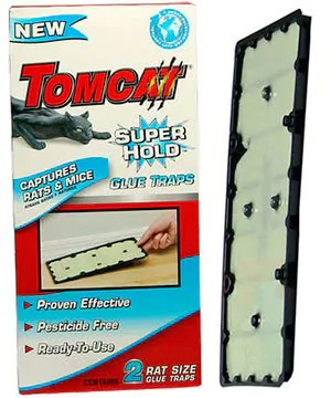 Tomcat Super hold Glue Traps
