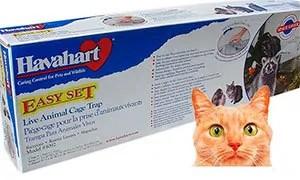Cats trap
