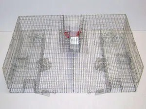 Sparrow Trap with Food and Water Pans