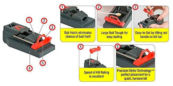 Step-by-step using Victor Mouse Trap