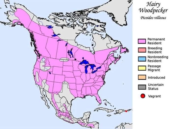 Woodpeckers habitat map