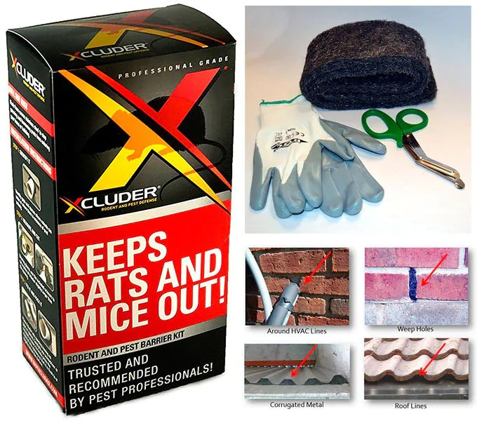 How To Keep Rodents Away Steel Wool For Mice And Rats