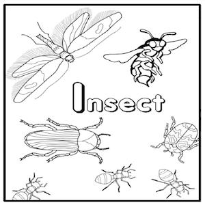 Intro to Pests Grade K-2 PestWorld for Kids Lesson Plan