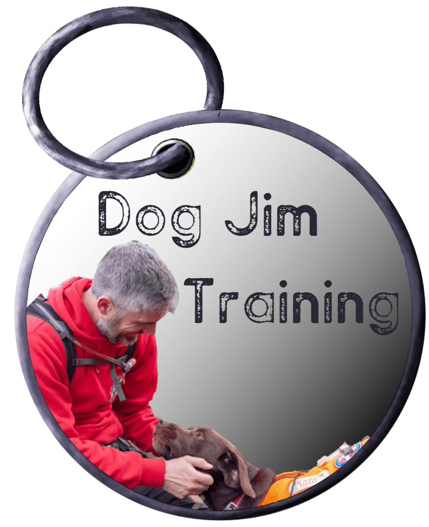 Dog Jim Training