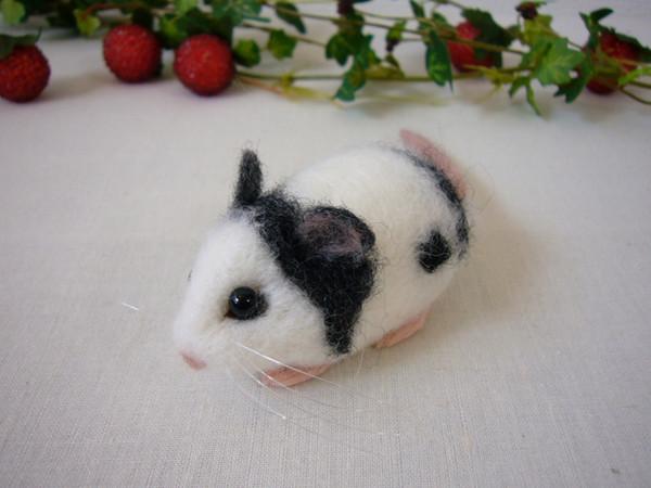 パンダマウスなどの鼠は繁殖率が高い為、一度にたくさんの子供を生みます。