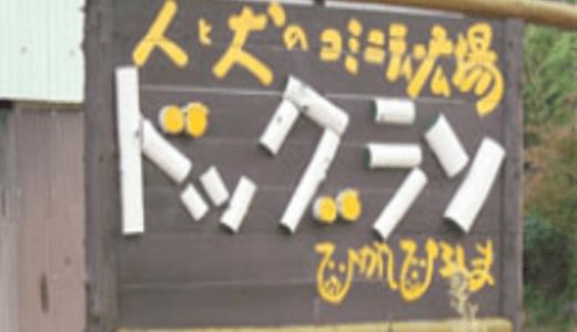 ドッグランひがしひろしま|広島県東広島市