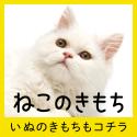 ヒトと愛猫の生活情報誌「ねこのきもち」