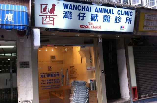 灣仔獸醫診所 Wanchai Animal Clinic- 灣仔pet shop, 灣仔寵物用品, 灣仔獸醫 | Zone One Zone - 寵物推介