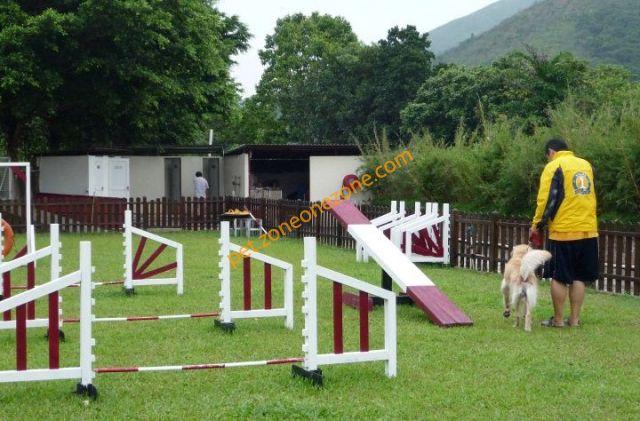 Pet Field 寵物新天地 (香港狗公園) | Zone One Zone