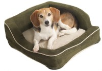 4 Scary Things in your dog's bed can be harmful to your ...