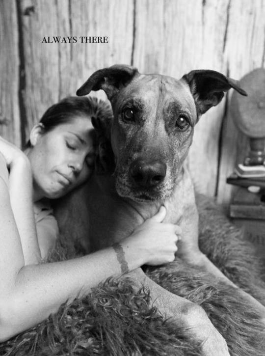 petaburtonphotography-peta-burton-darwin-photographer-dog-shoot-Macky-16