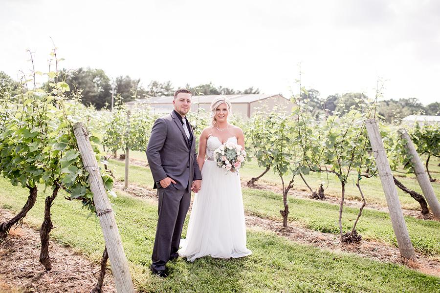 summer wedding at tomasello winery