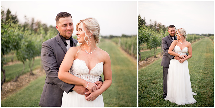 sunset portraits on their wedding day at tomasello winery