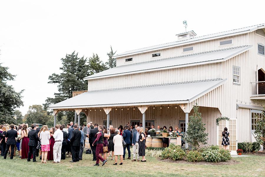 alpaca farm wedding reception venue