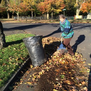 picture of Marianna raking up leaves in the neighborhood