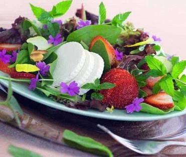 edible-flowers-food-decoration-ideas-12