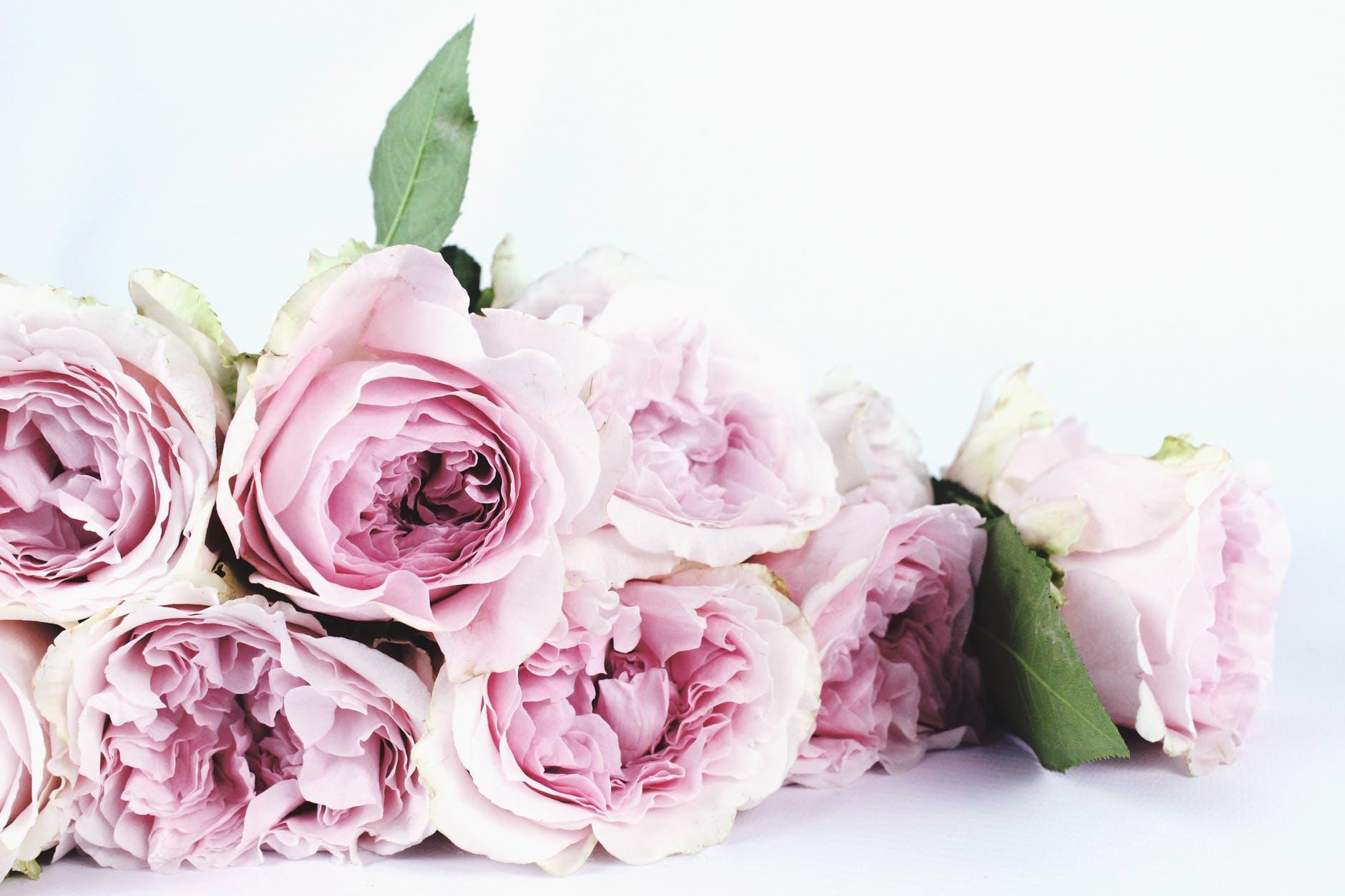pink petaled flower boquette