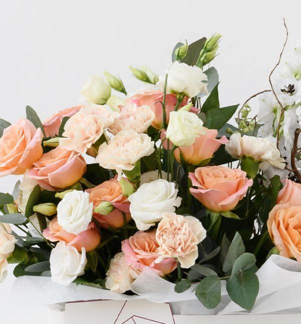 Baby Roses, Lyshanthos