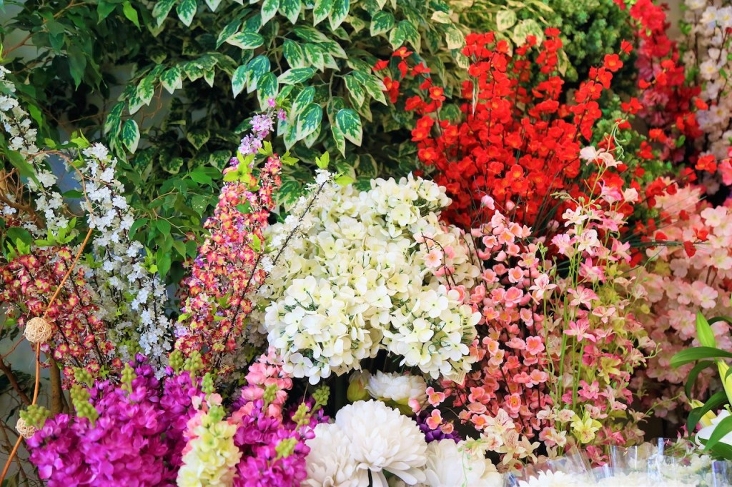 assorted colorful flowers
