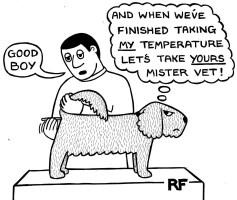 pain management in pets