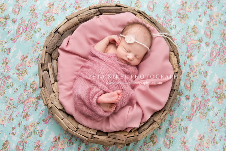 Hobart Newborn Photographer 3