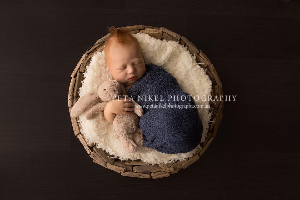 Hobart Newborn Photographer 5