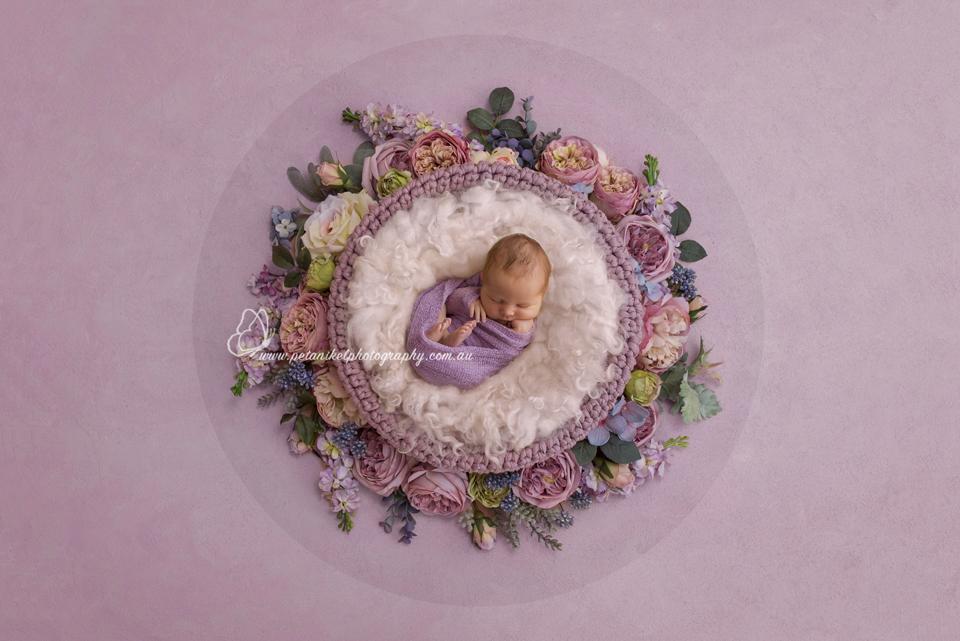 Hobart Newborn Photographer