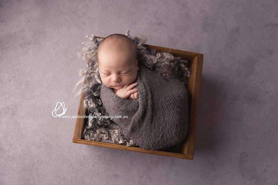 Newborn Photographer Tasmania